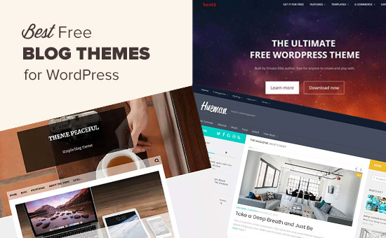 wordpress themes free blog, 💸 Free WordPress themes for Blog 2020, New Blog Hosting, New Blog Hosting